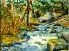 © Sous la dense forêt chante une rivière