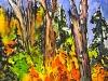 © Riche forêt